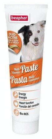 Pasta smakowa z witaminami dla psa Multi-Vitamin Paste Duo-Active 100g
